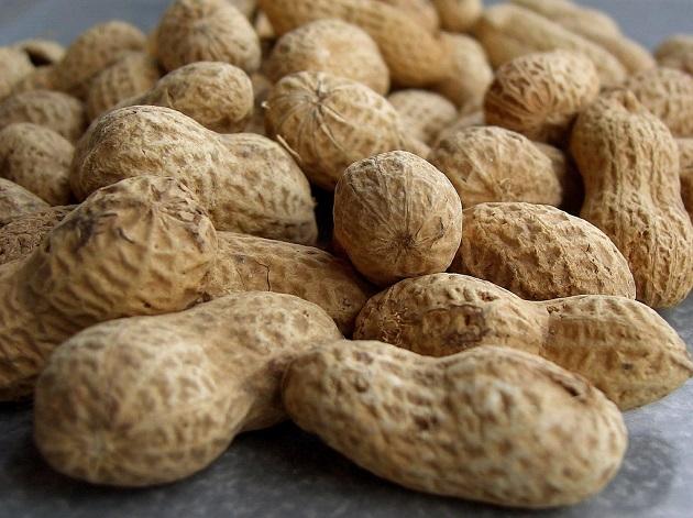 L'arachide est, avec l'oeuf et le lait, l'un des aliments les plus sensibles : elle représente 80 % des allergies infantiles. / Ph. ruurmo via Flickr, CC BY-SA 2.0