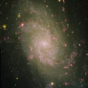 Grande et pâle, la galaxie du Triangle est très difficile à percevoir à l'œil nu. Au bout de l'un de ses bras spiraux, en haut et à gauche, NGC 604, l'une des plus grandes nébuleuses actuellement connues dans l'Univers. Photo NOAO.