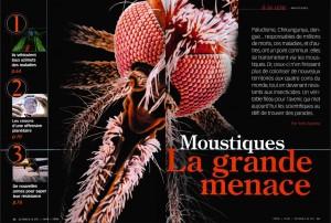 S&V 1065 moustiques