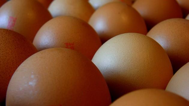 Les oeufs contribuent à éveler le taux de cholestérol dans le sang, mais de façon mineure (Ph. OliBac via Flickr CC BY 2.0).