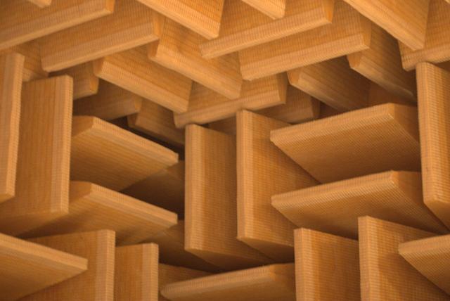 Le design particulier des chambres anéchoïques leur permet d'absorber les sons (ph. Paul Robinson