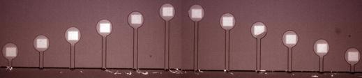 microfluidicsx519