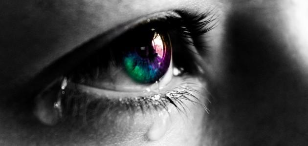 Pleurer est un mécanisme ancestral de survie (Ph.  Axel Naud via Flickr CC BY 2.0)