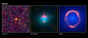 La lointaine galaxie SDP.81 a été découverte par le télescope spatial infrarouge Herschel, puis étudiée par le réseau submillimétrique SMA. L'image prise par Alma montre de façon spectaculaire la puissance de ce nouvel instrument astronomique. Photos ESA/ESO/NRAO.