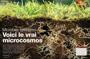 S&V 1161 - microbes terrestres