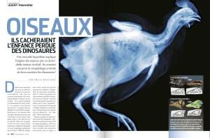 S&V 1142 - oiseaux dinosaures
