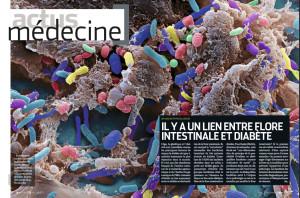 S&V 1143 - microbiote diabete
