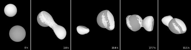 Les cinq étapes de l'accrétion de deux corps d'1 km environ qui formeront une comète : après un premier impact, ils se séparent, avant de s'unir à nouveau un jour plus tard – pour de bon. - Ph. Martin Jutzi (Univ. de Berne) et Erik Asphaug (Univ. d'Etat de l'Arizona).