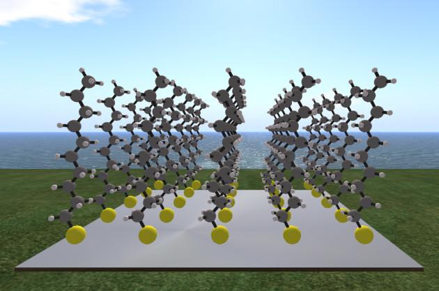 Des chercheurs auraient découvert une molécule qui encode le cycle de rotation de la Terre autour d'elle-même (Ph. Hiro Sheridan via Flickr CC BY 2.0)