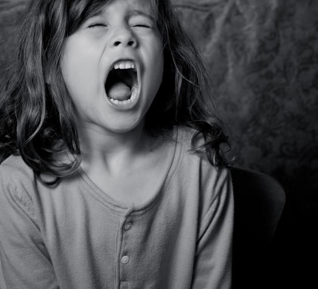 Les hurlements ont des caractéristiques très particulières qui déclenchent une réaction du cerveau (Greg Westfall via Flickr CC BY 2.0)