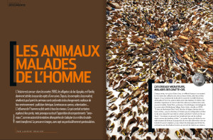 S&V 1149 - animaux disparition