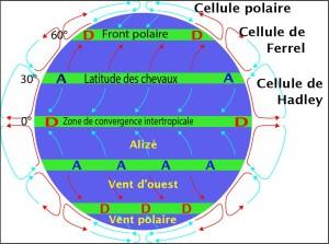 Sens général des vents à la surface du Globe (Ph. Pinpin via Wikicommons CC BY-SA 3.0).