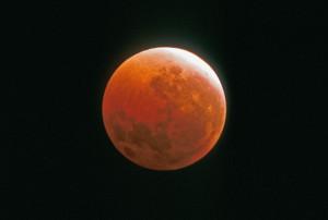 Durant une éclipse totale de Lune, la luminosité de l'astre des nuits chute spectaculairement, d'un facteur mille, ou plus. La Lune se pare d'une robe orangée, rouge ou grise. Photo Serge Brunier.