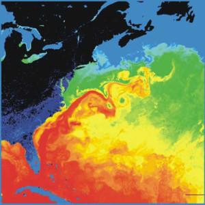 Zoom sur la fraction du Gulf Stream qui caresse la cote est des États-Unis (en bleu et noir). Les couleurs représentent les températures (rouge = chaud ; bleu = froid). Nasa