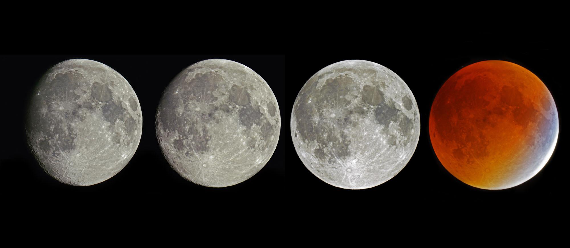 Trois jours dans la vie de la lune de la Terre... Au fil de son orbite terrestre, la Lune se dévoile selon différentes phases. A l'approche de la Pleine Lune, les ombres à sa surface disparaissent peu à peu, puis le disque lunaire est entièrement éclairé. Sauf, bien sûr, en cas d'alignement parfait entre notre étoile, notre planète et sa lune. Les trois astres nous offrent alors le somptueux spectacle d'une éclipse de Lune... Photo S.Brunier