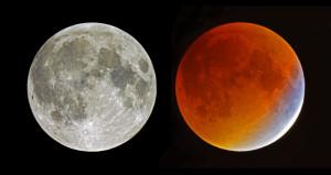 L'apparence de la Lune éclipsée prise en photographie est trompeuse. En effet, pour rendre au mieux la couleur de la phase totale de l'éclipse, et pour rendre celle-ci bien visibles sur leurs images, les photographes règlent leur appareil et ajustent leur prise de vue en fonction de la luminosité du phénomène... Ici, sur l'image de la Pleine Lune prise avant l'éclipse, 1/1000 e de seconde a suffi, à 200 ISO, et un diaphragme de 12, au foyer d'un petit télescope de 1800 mm de focale. L'image de droite, en revanche, a nécessité... 5 secondes de temps de pose ! Pendant l'éclipse du 28 septembre, la Lune plongée dans l'ombre de la Terre était donc environ cinq mille fois moins brillante que la Pleine Lune... Photos S.Brunier.