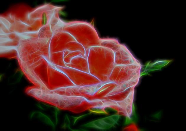 Une rose est une rose est... un circuit électronique. Vue d'artiste (Ph. Chris Sorge via Flickr CC BY 2.0).