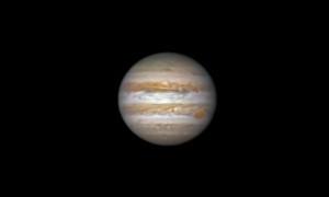 Jupiter photographiée avec un télescope de 225 mm de diamètre, le 1 janvier 2016. La Grande tache rouge est visible au limbe de la planète géante. Photo Paul Rolet.