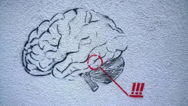 Le cerveau suivrait le rythme des saisons (Ph. Denis Bocquet via Flickr CC BY 2.0)
