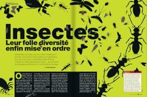 S&V 1170 - insectes