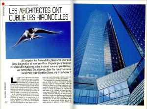S&V 859 - hirondelles architectes
