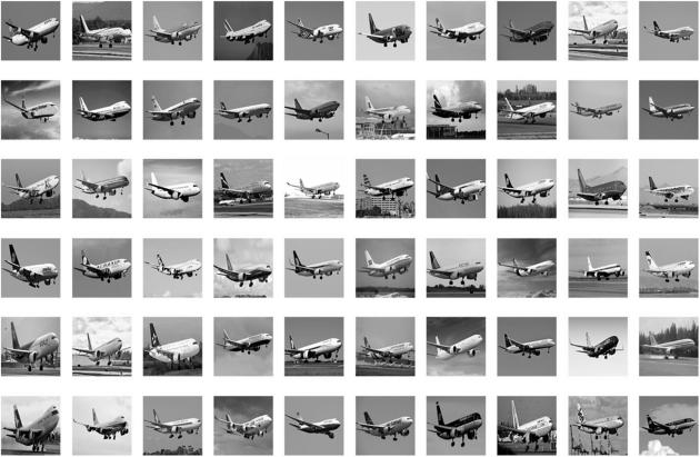 Avant de tester la capacité des IA à reconnaître des images zoomées ou floutées, les chercheurs leur ont d'abord appris à reconnaître les objets faisant partie du test. Ici, le type d'image présenté à l'IA dans la phase d'apprentissage (Shimon Ullman et al., PNAS 2016).