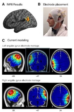 Illustration de la manip et simulation de l'intensité du champ électrique reçue par les gyrus des volontaires (Price et al. J. Neurosci., 2016).