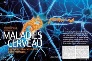 S&V 1133 - maladies cerveau microbes
