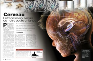 S&V 1163 - cerveau memoire enfance
