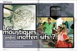 S&V 1124 dengue