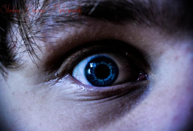 La peur conduit à deux réactions possibles : se figer ou fuir. Comment le cerveau décide ? (Ph. Stefan Rheone via Flickr CC BY 2.0)