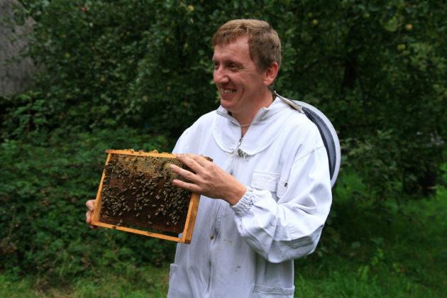 La communication verbale des humains et celle par phéromones des abeilles pourraient provenir d'une même source génétique (Lestat via Wikicommons CC BY-SA 3.0)